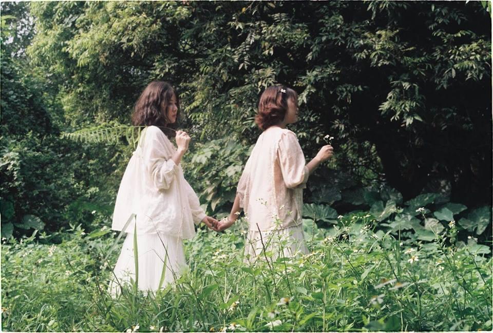 Vườn nhãn Vĩnh Tuy