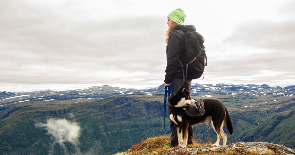 Go Hiking là một kế hoạch cho hành trình du lịch khám phá đi bộ